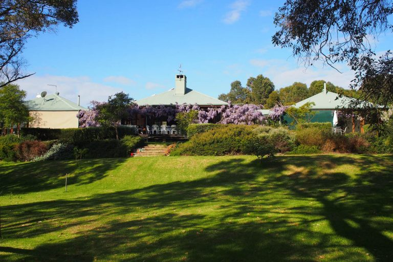 lawn area at henty lodge ferguson valley