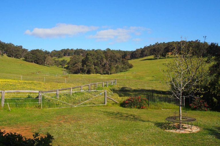 view of hills at henty lodge ferguson valley
