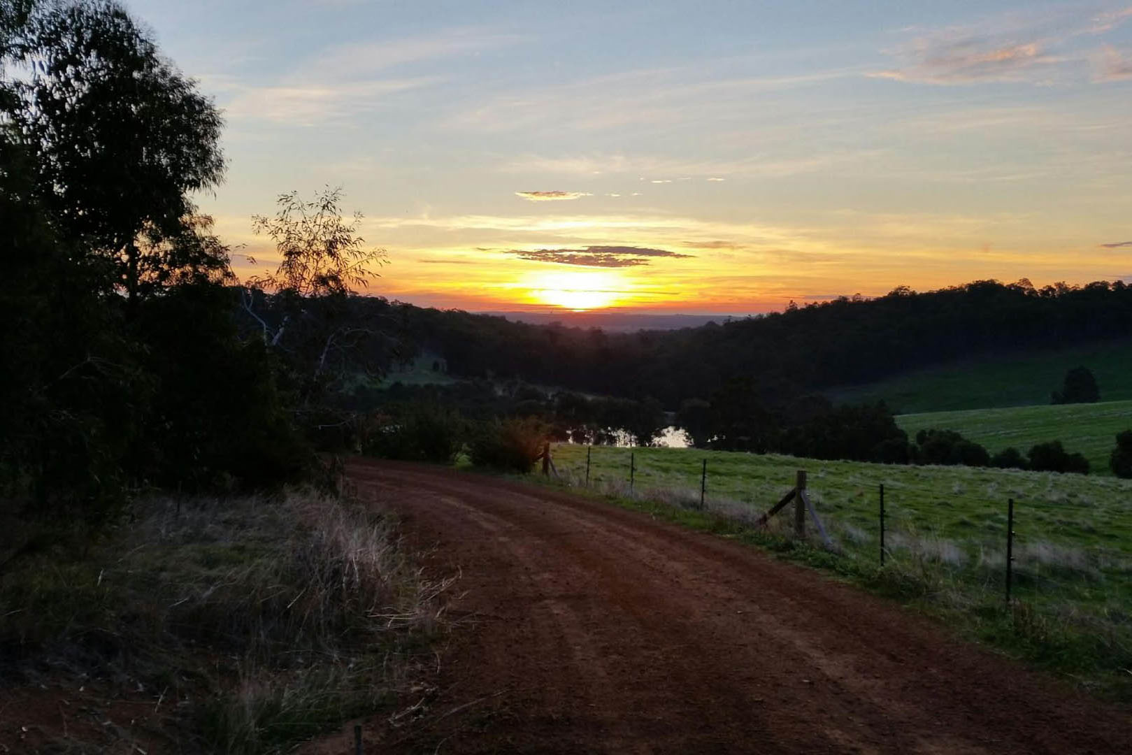 sunset on driveway henty lodge ferguson valley